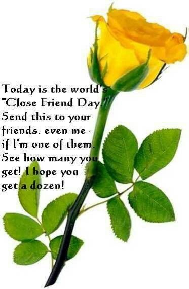 A Beautiful Yellow Rose For All Of My Special Family And Friends