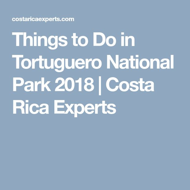 Things to Do in Tortuguero National Park 2018 | Costa Rica Experts