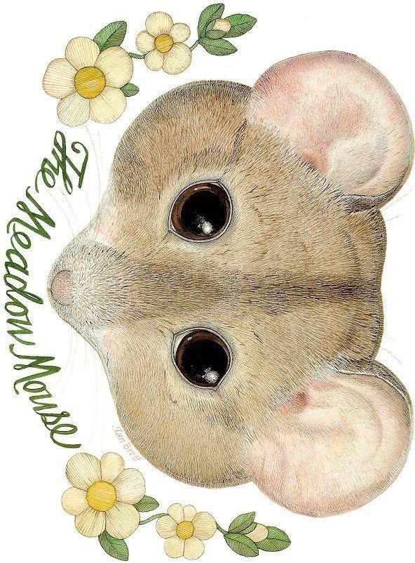 The mitten, Jan brett and Mouse mask on Pinterest