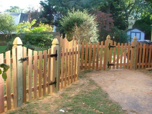cedar picket fence with dip and pine colonial gothic point post