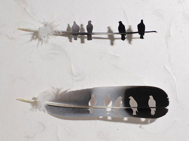 Chris Maynard's Feather Folio | Trendland: Fashion Blog & Trend Magazine