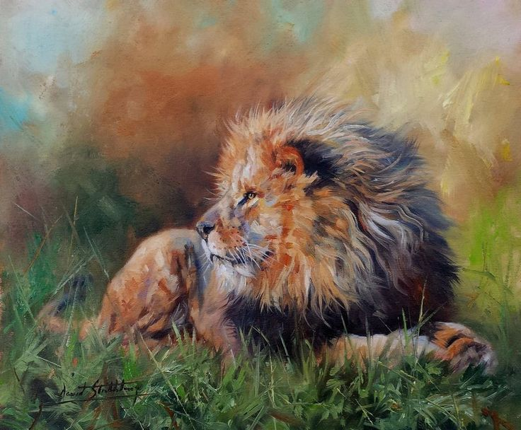 Wildlife Art,wildlife artist,original Paintings of animals and birds by UK Wildlife Artist David Stribbling.Paintings of big cats, Wildlife Painter, Wildlife Paintings, Tiger Paintings, Elephant Paintings, Big Cat Paintings.Buy wildlife prints and origina