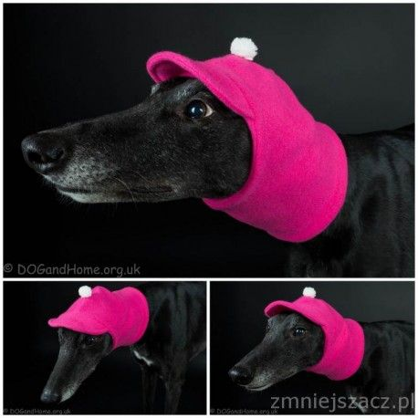 Greyhound, Whippet hat made from fleece (two colors in one)