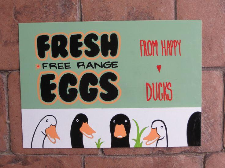 fresh eggs from happy ducks sign