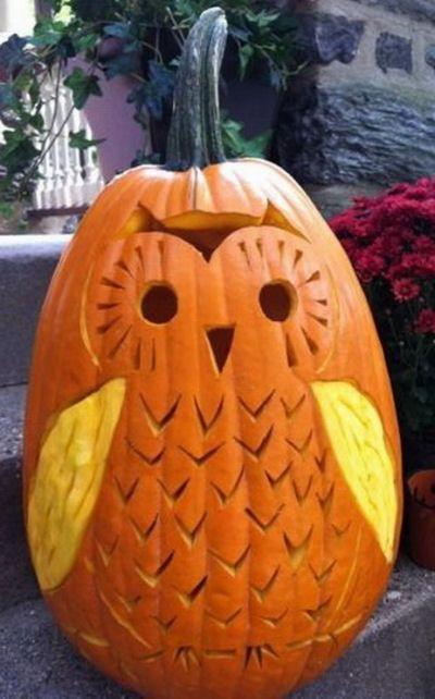 Cute Carved Owl Pumpkin!
