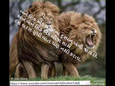 The two lions friendship || Story || WhatsApp status 30th seconds Video 💞