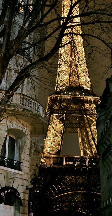 * Eiffel Tower at Night
