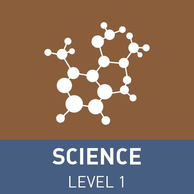9 best ncea level 1 study resources images on pinterest gym ace ncea with our subject revision videos resources and study urtaz Choice Image