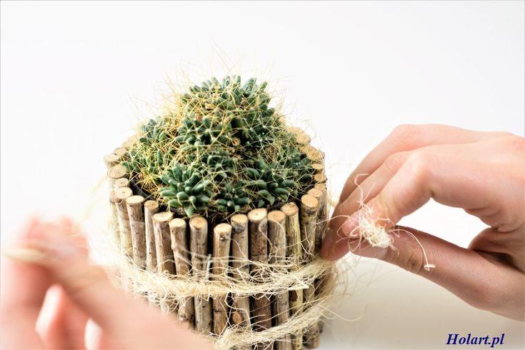 DIY: Doniczka z brzozowych patyczków