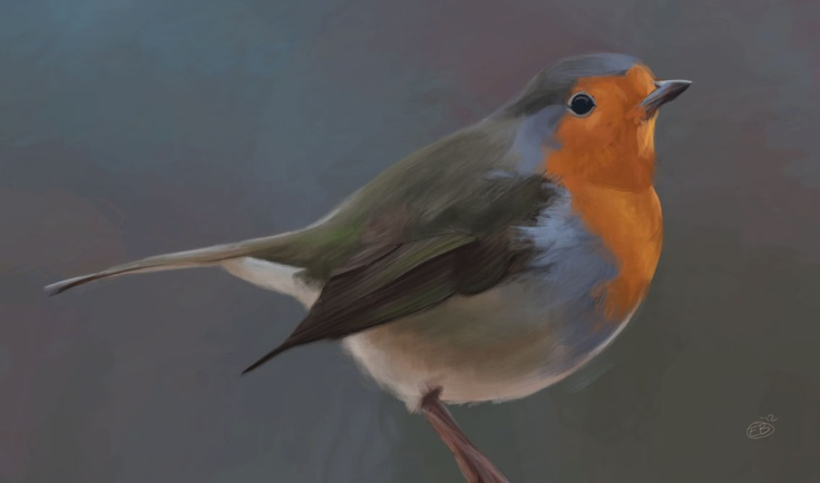 Digital Bird study