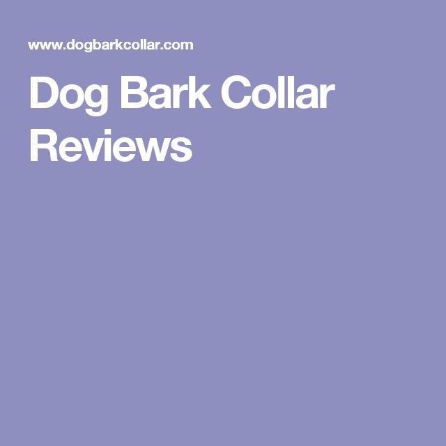 Dog Bark Collar Reviews