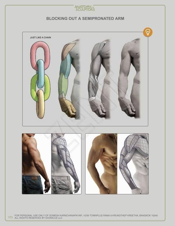 Trail Guide To The Body 4th Edition Pdf Torrent. protocol cumplio Mejora tutores Soporte Lacrosse massive