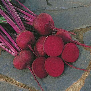 Red Ace Hybrid Beet Seeds