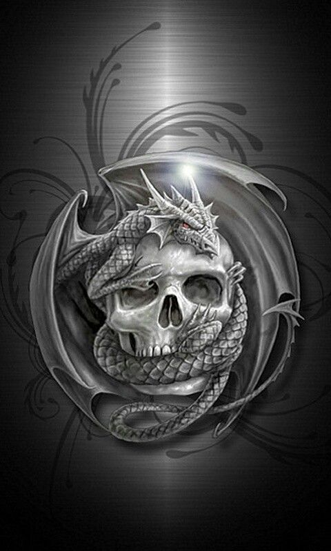 skull dragon phone wallpapers pinterest skulls  dragon