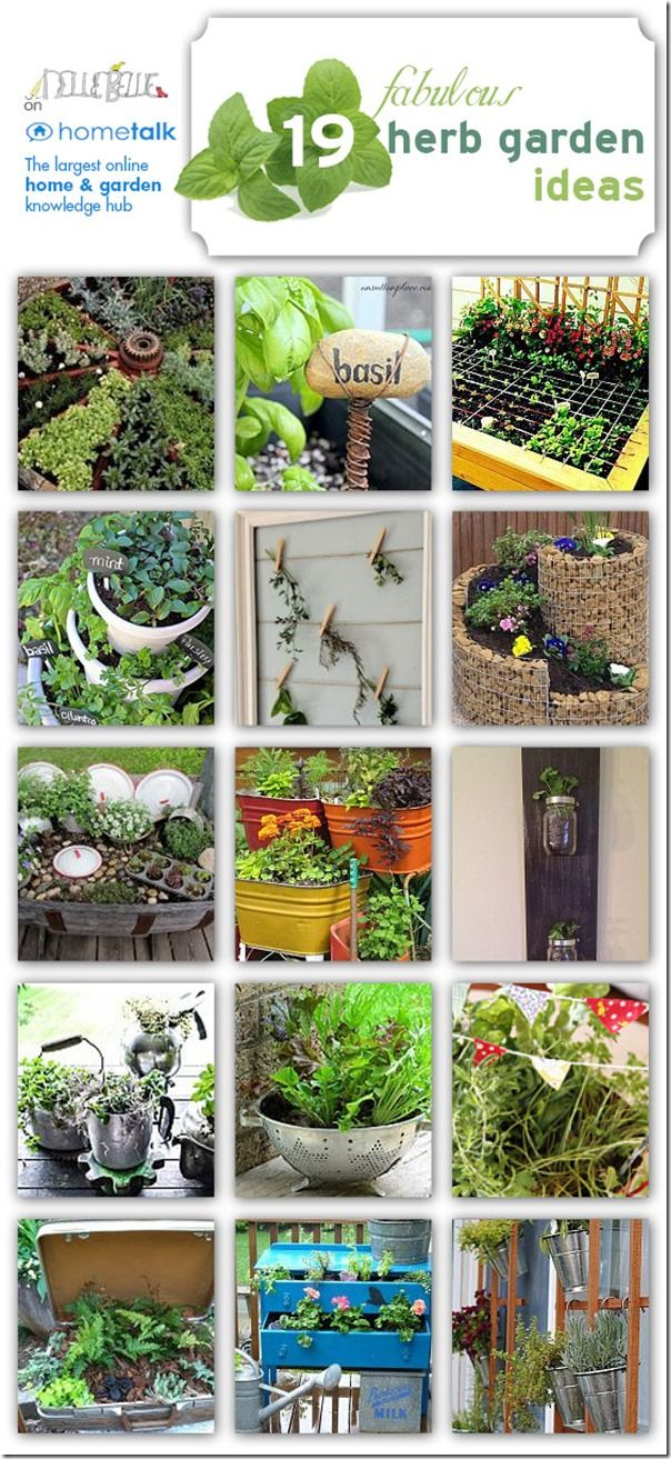 Great ideas for creating an herb garden! Repurpose an old suitcase? or dresser?