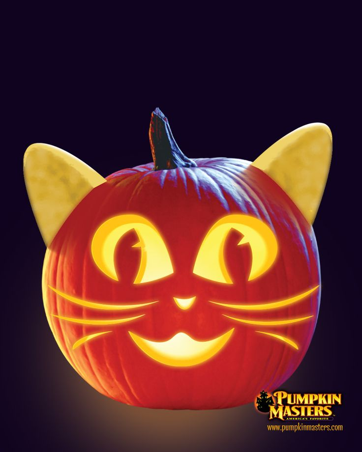 1000 ideas about cat pumpkin on pinterest pumpkin Cat pumpkin carving patterns