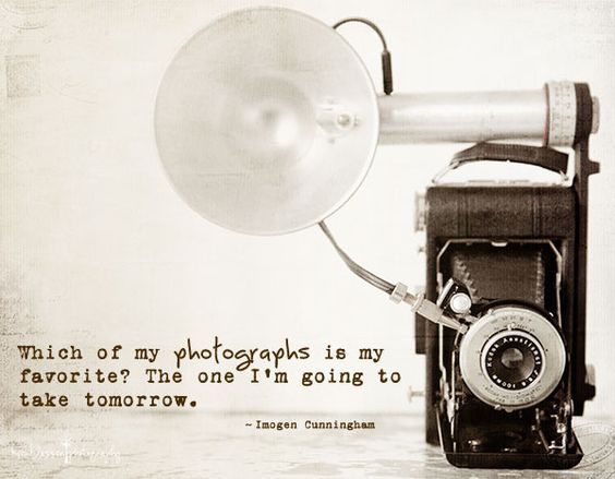 45 Best Photography Quotes Images On Pinterest | Photography Quote