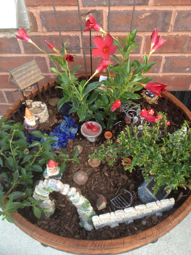 Gnome In Garden: 380 Best Images About Mini Fairy/Gnome Gardens On