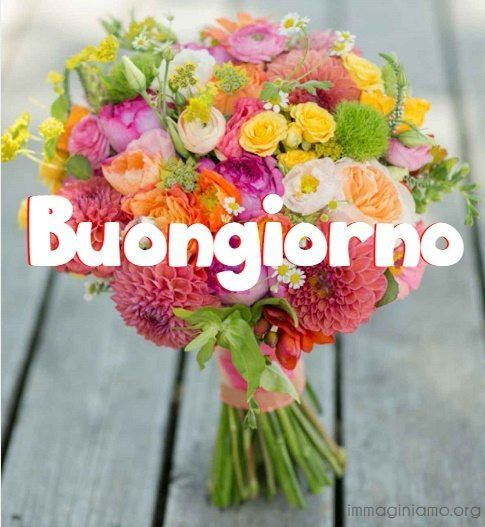 Immagini belle – boquet fiori per il buongiorno