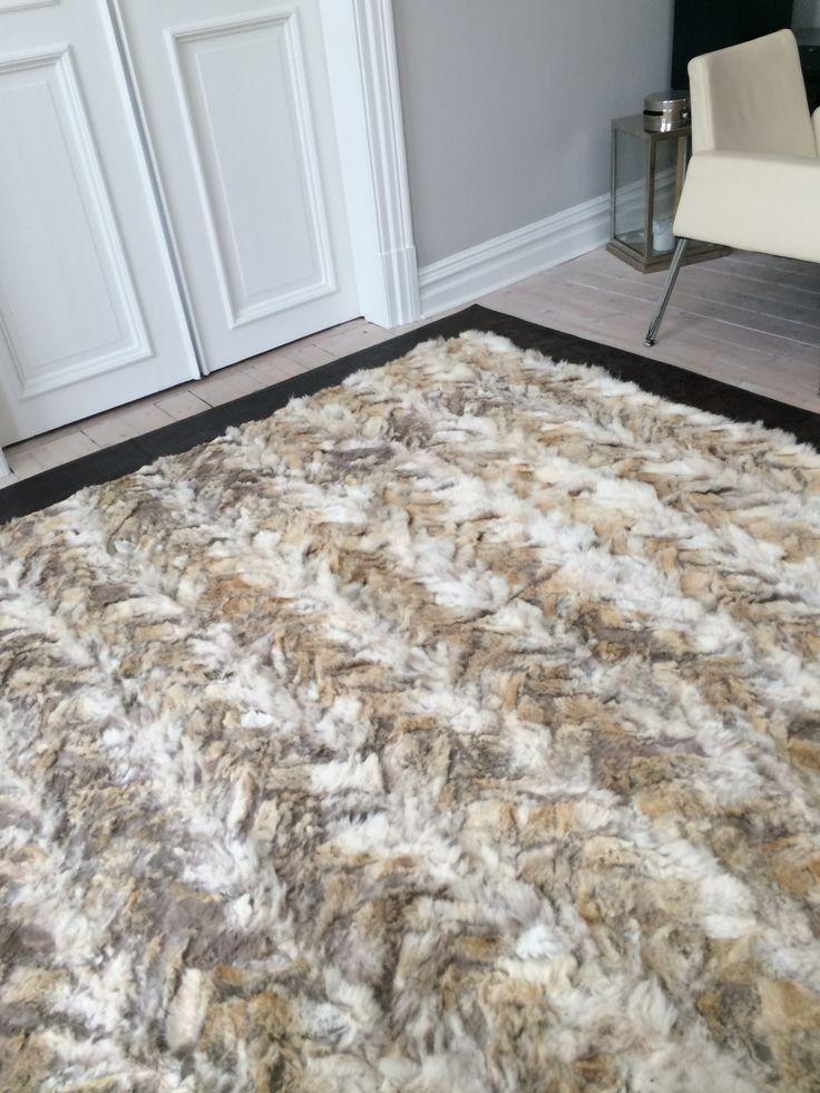 My livingroom coyote rug