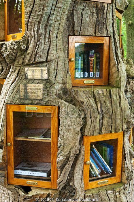 Gelderland, dorp Ruurlo, gemeente Berkelland: In het buurtschap de Bruil staat een Boekenruilboom, Bruilboom of ruilboom. Het doel van deze openbare bibliotheek is het delen en verbinden door boeken ruilen. Promotie van het leesboek en het lezen. De boeken zitten in boekenkastjes in een eeuwen oude kastanjeboom en zijn gemaakt door de schrijnwerker Rene. Burgerinitiatief omdat door bezuinigingen van de regering steeds meer bibliotheken op het platteland worden gesloten. / Didi