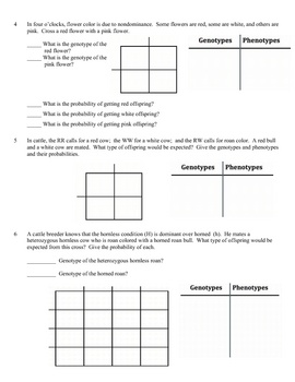 Worksheets Incomplete Dominance Worksheet 1000 images about hereditygenetics on pinterest genetics problems worksheet incomplete dominance nondominance