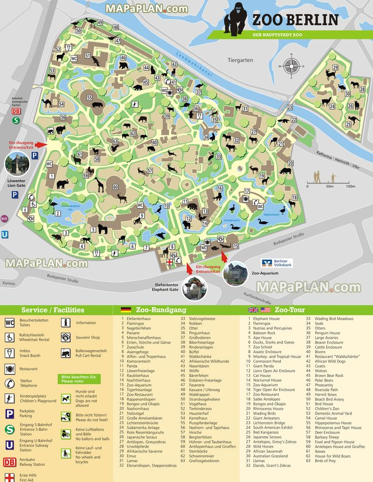 Berlin Zoo Map I Printed It Out In German And In English Plus - Georgia zoo map