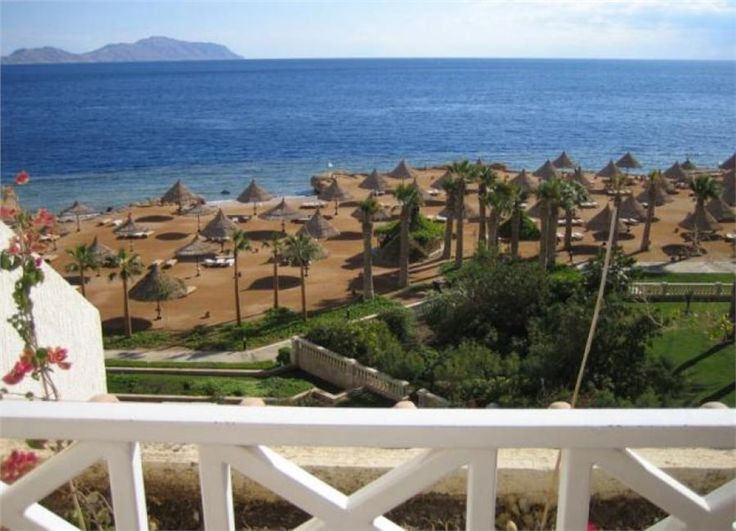 Five Things You Need To Try In Sharm el Sheikh