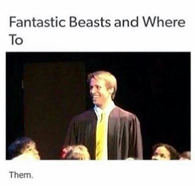haha get it because this is when Cedric said that hufflepuffs are particularly good finders
