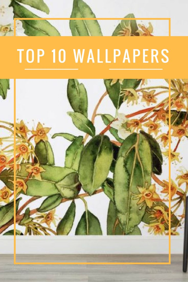 Whether you want to embrace the tropical trend and add some boho vibes to your place or fake it with the latest in faux papers, here are our top 10 wallpapers.