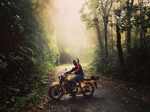 """Dark, Deep, Silent Whispers Of The Woods  #livetoride #relove #woods #deepforest #tripmachine #wanderlust #mistywoods #travelgram"" by @aswinmanu. #fslc #followshoutoutlikecomment #TagsForLikesFSLC #TagsForLikesApp #follow #shoutout #followme #comment #TagsForLikes #f4f #s4s #l4l #c4c #followback #shoutoutback #likeback #commentback #love #instagood #photooftheday #pleasefollow #pleaseshoutout #pleaselike #pleasecomment #teamfslcback #fslcback #follows #shoutouts #likes #comments #fslcalways"