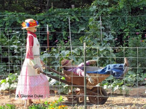 hahahaha!!!!  How cute is this scarecrow couple for the garden?