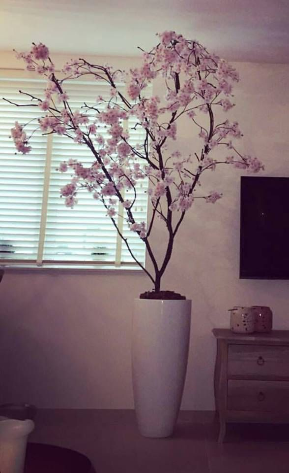Japanse boom