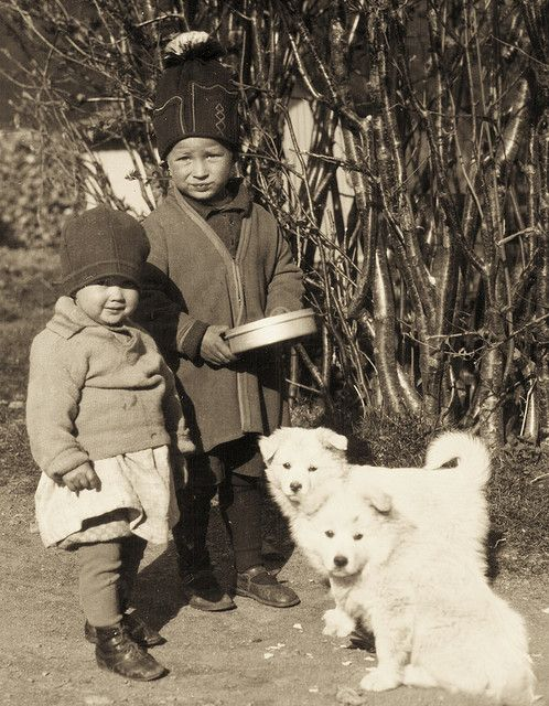 Sami Children and puppies in Jämtland Sweden - White Wolf : Rare, old photos of indigenous Sami people showcase their ancient and traditional way of life