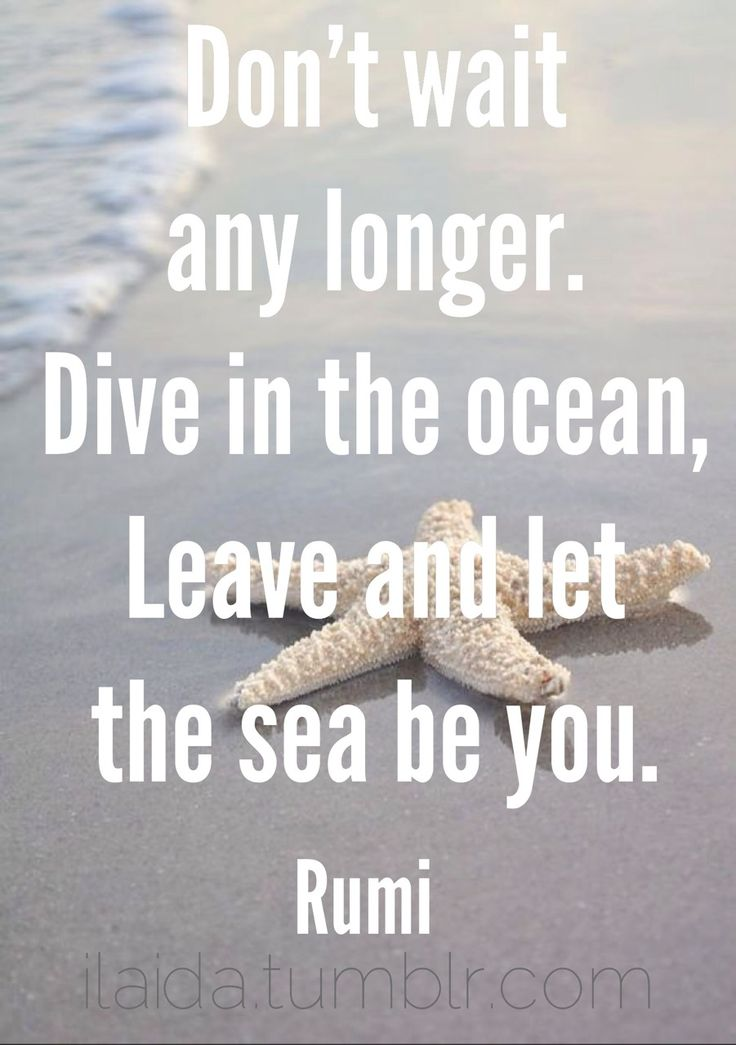 Don't wait any longer. Dive in the ocean, leave and let the sea be you. - Rumi ilaida.tumblr.com