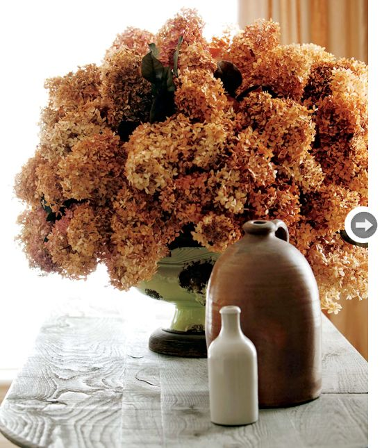 Hydrangeas always make a spectacular floral display, but when they're dried they develop a deliciously rich, muted colour that look fantastic pouring out of a colourful vase.