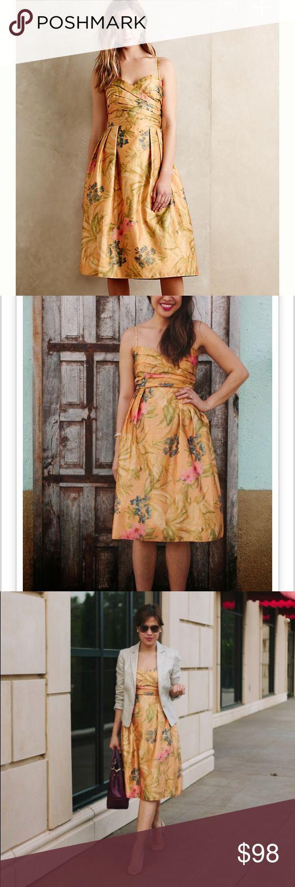 Anthro James Coviello Botanica Dress Imbued with New York