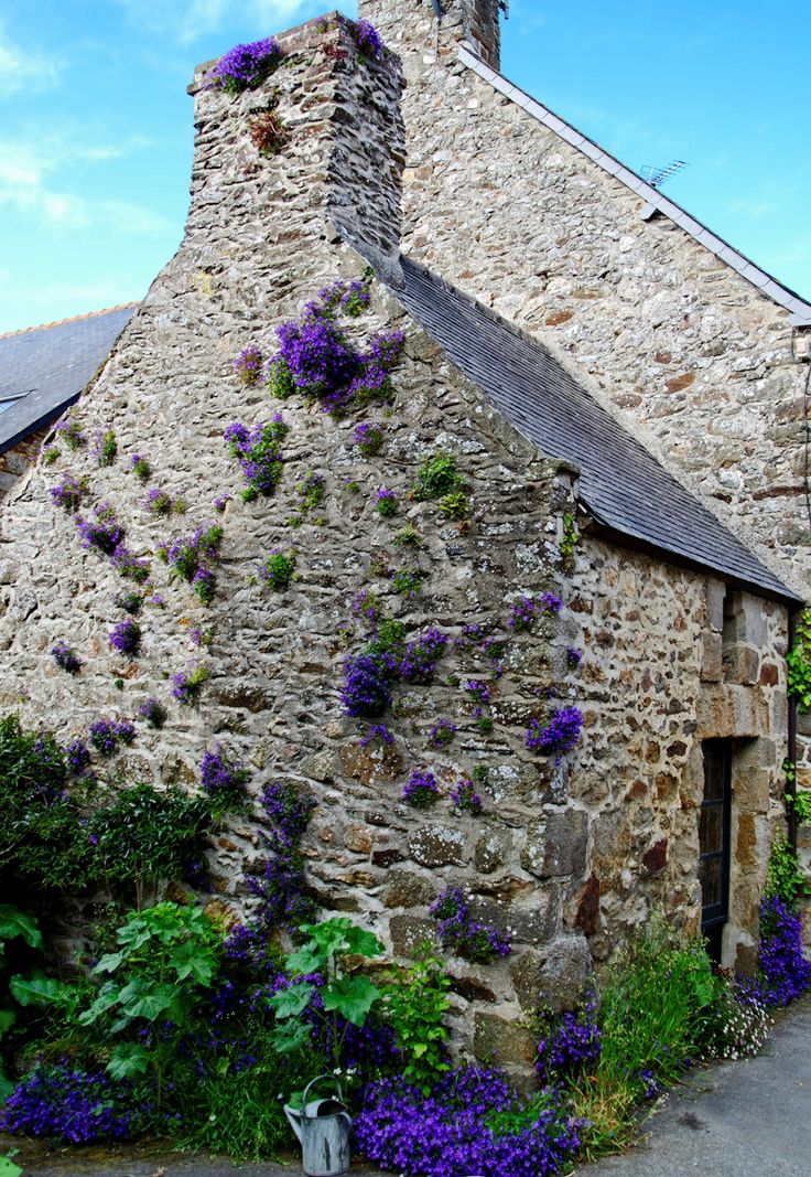 Saint-Suliac, Bretagne -  This is gardening with lobelia