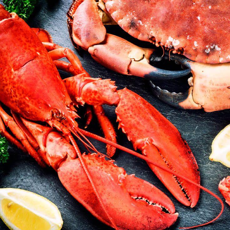 Prawn Food Poisoning Symptoms