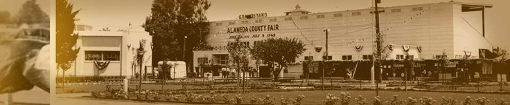We're heading to the county fair as part of our staycation this year. The Alameda County Fair celebrates it's 100 year anniversary. That's a lot of 4H projects through the years!
