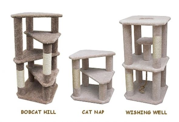 21 best images about cat ideas on pinterest cats toys for Build your own cat scratch tower
