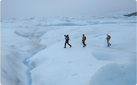 Trekking con crampones por el Glacier Grey