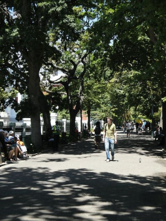 The cool Company Gardens, linking Wale Street with Gardens, goes past the Iziko Museums