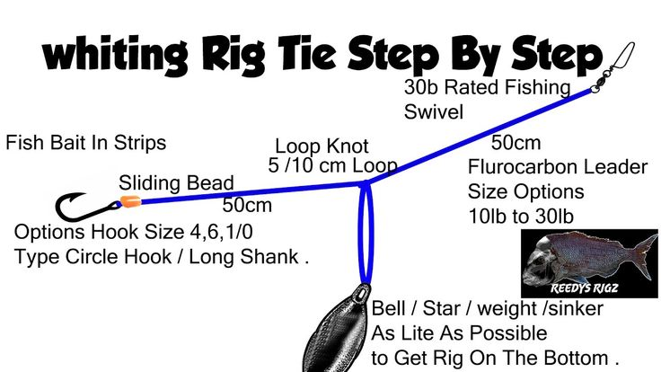 13 best whiting rig pre tied on paternoster surf  u0026 bottom fishing tackle images on pinterest