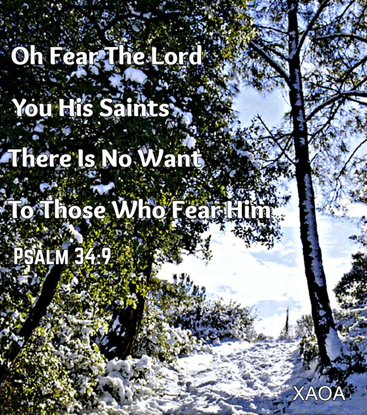 xaoa/'Oh taste and see that the Lord is good.Blessed is the man who trusts in Him!Oh fear the Lord,you His saints!There is no want to those who fear Him.'PSALM 34:8-9