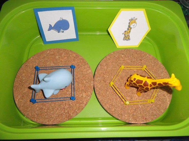 kurkenbord met kaarten van dieren + dieren in speelgoed potjes met rekkjes en punaises kleuters maken een kooi per dier