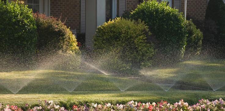 Sprinkler Installation: the Future of Plumbing - https://plumberjobs.org/sprinkler-installation-the-future-of-plumbing/