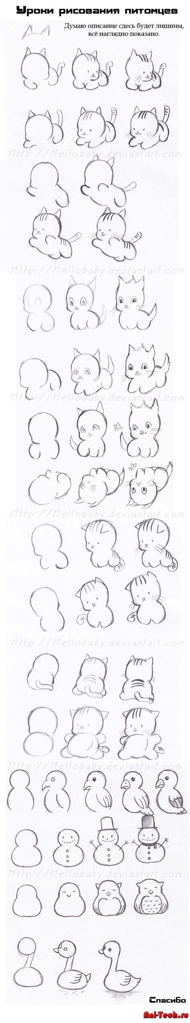 best cute images on Pinterest Drawing ideas Cute photos and