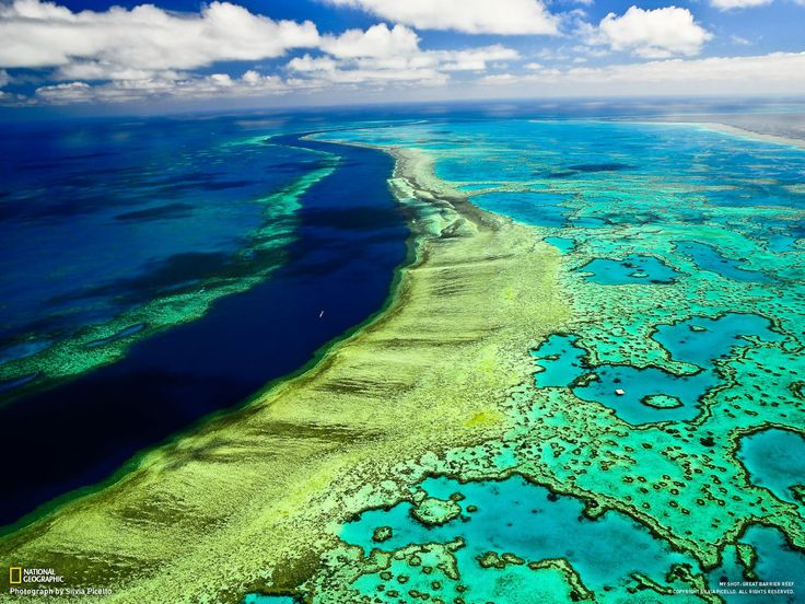 Great Barrier Reef. Taking a helicopter ride over the reef is absolutely awesome! #greatbarrierreef #coral