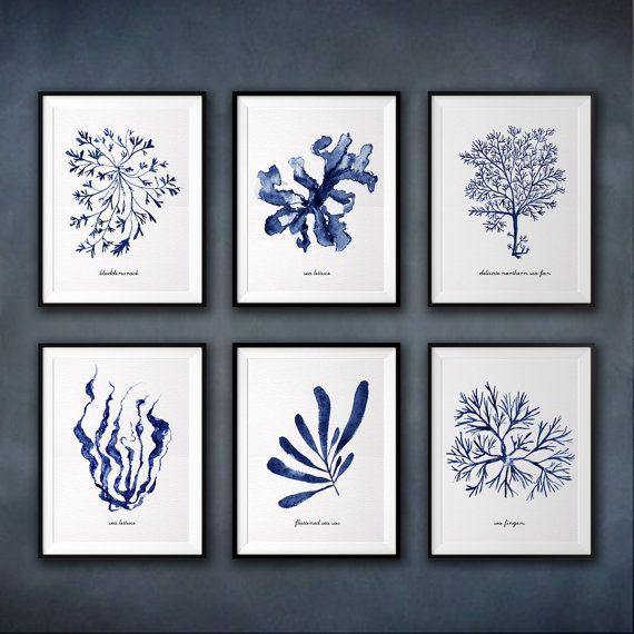 Coastal  art, Seaweed watercolor painting, Set of 6, Beach house decor, Bathroom decor, Blue and white wall decor, Blue seaweed print set